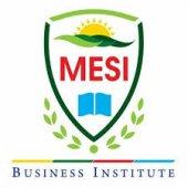 MESI Business Institute
