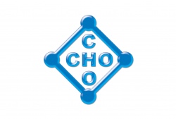 Cho Cho Co., Ltd.